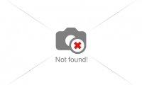 Více o značkách výrobce klavírů PETROF